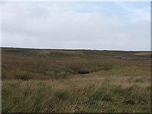SE0369 : Greenstones by Steve Partridge