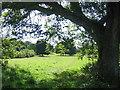 SP8900 : Abbey Park, Gt Missenden by Pip Rolls