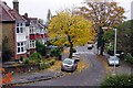 TQ3573 : Hengrave Road - Autumn by David Wright