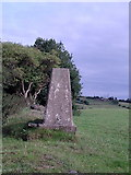 SE1728 : Trigpoint TP4825 Mill Carr Hill by Stephen Armstrong