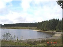 SH9656 : Llyn Brenig beach by Dot Potter