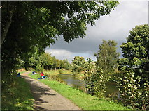 NS6273 : Forth and Clyde Canal near Hungryside Bridge, Torrance by Brian D Osborne
