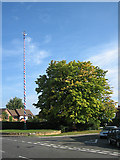 SP1451 : Welford-on-Avon Maypole by Dave Bushell