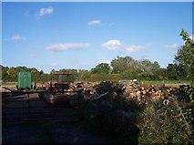 SO7658 : Woodyard near Cobhouse Farm. by Bob Embleton