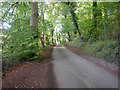 SU7486 : Fawley Bottom Lane by Dennis Turner