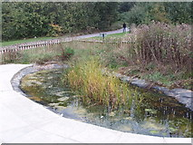 TQ2087 : Pond at Welsh Harp Environmental Education Centre by David Hawgood