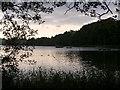NS5873 : Bardowie Loch by Chris Upson