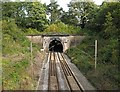 SJ9077 : Prestbury tunnel by David Kitching