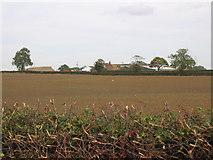 TA1350 : Moor Cottage Farm by Stephen Horncastle