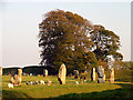 SU1069 : Avebury Stone Circle by Pam Brophy