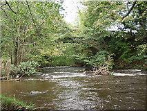 SJ3138 : Pont-y-blew bridge over Afon Ceiriog by John Haynes
