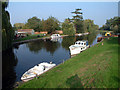 TL5064 : The river Cam at Clayhithe CB5 by Philip Talmage
