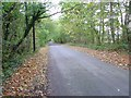 TQ2727 : Quiet Country Road south of Staplefield, West Sussex by Pete Chapman