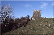 M1677 : Castleburke, Ballintubber. by Dr Charles Nelson