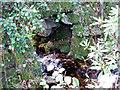 SW4332 : Stream below Boswarva by Sheila Russell