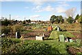 SU4722 : Allotments off Hill Lane, Colden Common by Peter Facey
