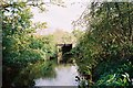 SU8573 : Cokeley Bridge, over The Cut by Andrew Smith