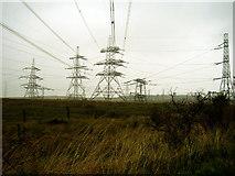 NS4459 : Neilston Substation by David Neale