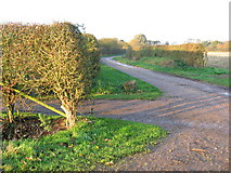 TA2044 : Byway to Rolston by Stephen Horncastle