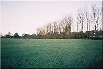 SU8871 : Countryside, Warfield by Andrew Smith