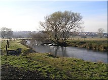 SK4385 : Not the River Rother, Woodhouse Mill by David Morris