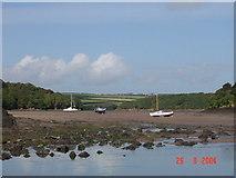 SM8507 : Stepping Stones, Sandy Farm, Pembrokeshire by Julian Dowse
