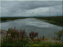 ST3382 : Newport Wetlands Reserve, Gwent levels. by Jim Mitchell