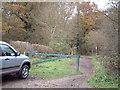 SU9693 : Hodgemoor Wood by David Squire