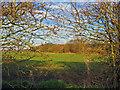 TA0054 : Farmland at TA0013954011 by Stephen Horncastle