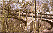 SE2839 : Seven Arches Aqueduct, Adel Woods by Chris Yeates