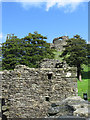 SX3384 : Launceston Castle by Ernie Camacho