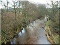 NR6911 : Conieglen Water by Patrick Mackie