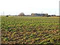 TL4362 : Farmland between Histon-Impington and Girton, Cambs by Rodney Burton