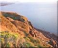 NX9512 : St Bees Head Cliffs. by John Holmes