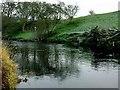 SJ9893 : River Etherow by Stephen Burton