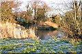 NY1553 : Pond, Seaville by Bob Jenkins