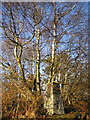 SO5105 : Trig Point at Trelleck Beacon by Ros Hallett