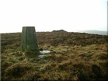 NS6735 : Trig point and cairn on Dungavel Hill by Gordon Brown