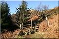 NY4222 : Stile lLeading to Swinburn's Park Plantation by Bob Jenkins