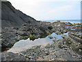SX1496 : Rock pool at Crackington Haven Cornwall by Clive Perrin