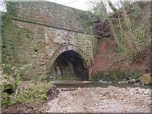 NY2544 : Bridge, Cowslaw by Bob Jenkins