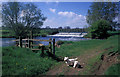 TL1097 : Weir on the Nene Way by Mike Bardill