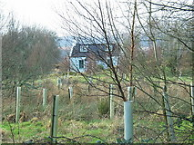 NR8365 : Wood House off the A83 to Tarbert. by Johnny Durnan