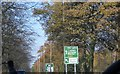 SJ4285 : Autumn Colours in South Liverpool by Russ