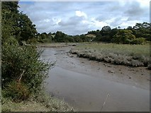 SW8646 : The Tresillian River, tributary of the Truro River Cornwall by Situation