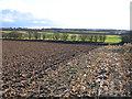 TF8323 : Landscape W of Weasenham St Peter, Norfolk by Rodney Burton