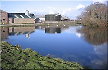 NY1853 : The Swan Pond at Salt Cotes by John Holmes