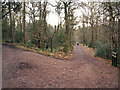 SO9974 : Junction of tracks, Lickey Hills Country Park by Phil Champion