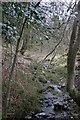 NY4525 : Small Stream on Soulby Fell by Bob Jenkins