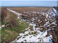 SE9541 : Cherry Burton Wold by Stephen Horncastle